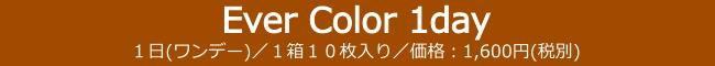 EverColor1day,エバーカラーワンデー,カラコン,カラーコンタクト,コンタクトレンズ,使い捨てカラコン,1日使い捨てコンタクト,ワンデー,1日使い捨て,沢尻エリカ
