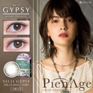 PAM-GYPSY