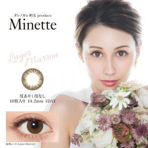 MINE-LM